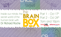 brainbox2mb